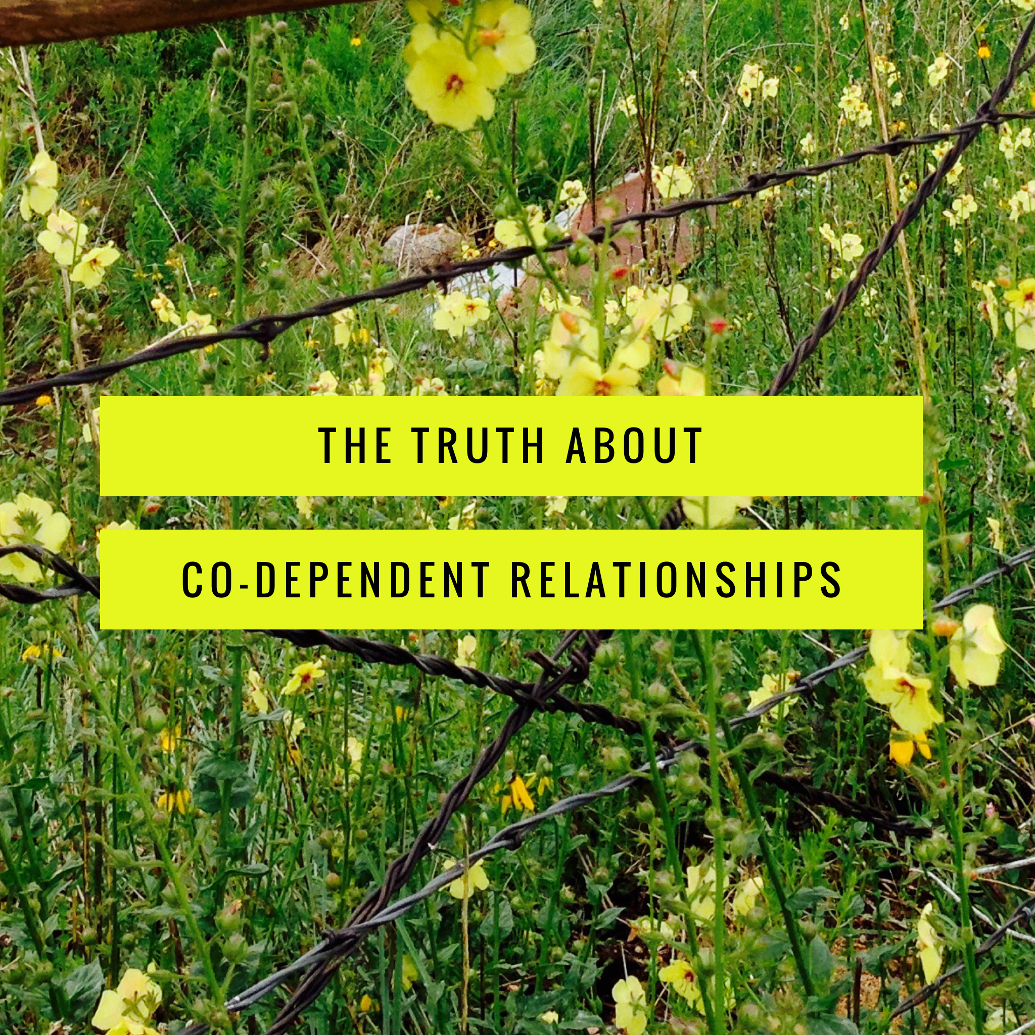 The Truth About Codependent Relationships