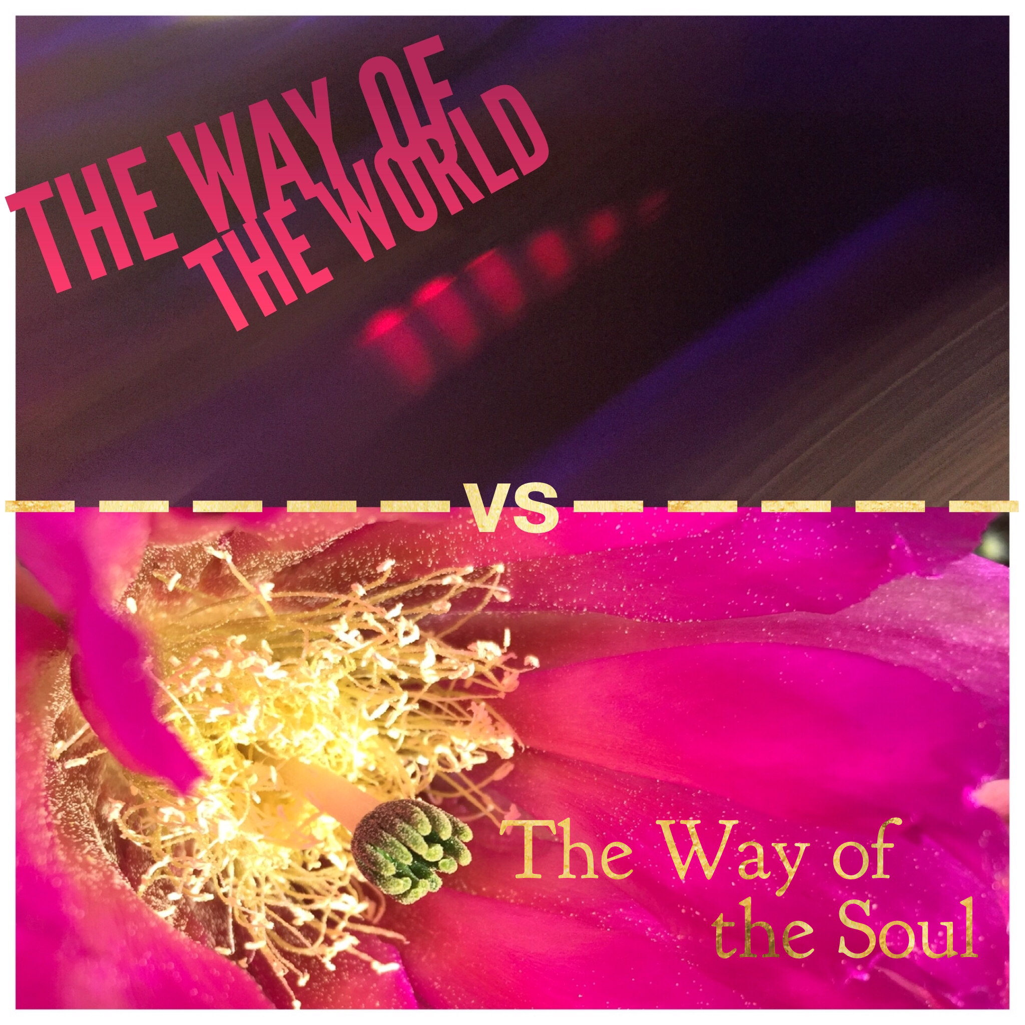 The Way of the World -vs- the Way of the Soul